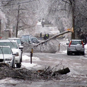 Street blocked with broken trees and ice